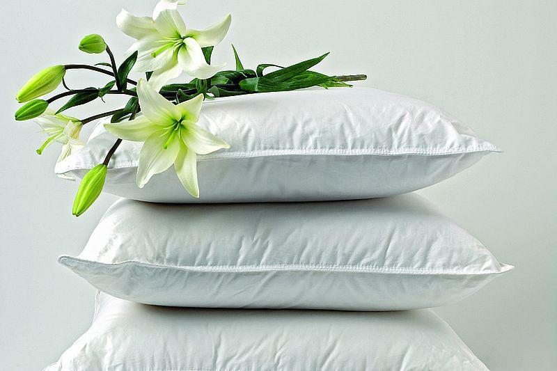 sofakissen in 7 gr en schlafen24 gmbh co kg. Black Bedroom Furniture Sets. Home Design Ideas